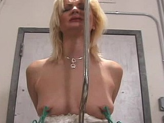 Sexy bitch gets hog scheduled and tit-tortured